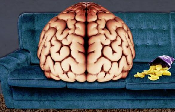 brainoncouch.JPG